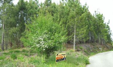 Plot Land for Sale in Venestal, Castelo Branco