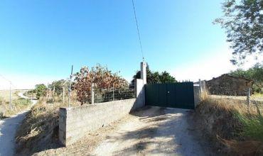 Rural Property for Sale in Vale do Feto, Lardosa, Castelo Branco, Castelo Branco