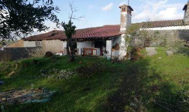 Farm T2 for Sale in Asseiceira, Tomar, Santarém