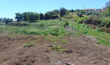 Plot Land for Sale in Outeiro, Pampilhal, Cernache do Bonjardim, Castelo Branco