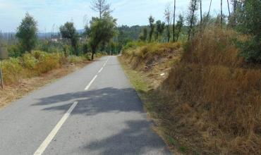 Plot Land for Sale in Pampilhal , Castelo Branco