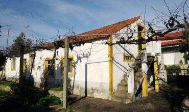 Villa T2 for Sale in Cernache do Bonjardim, Castelo Branco