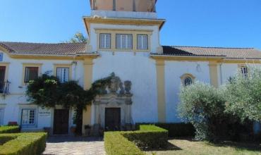 Farm for Sale in Alvega Abrantes, Santarém