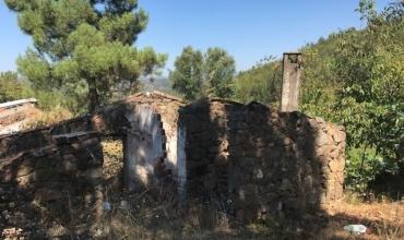 Rural Property for Sale in Azinheira, Matos do Pampilhal, Cernache do Bonjardim, Castelo Branco